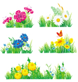 flowers and grass vector image vector image