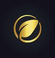 round leaf icon gold logo vector image