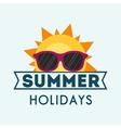 summer holidays sunny sunglasses card vector image