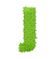Uppecase letter J consisting of green leaves vector image
