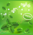 green background with fresh min vector image vector image