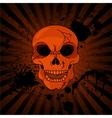 Evil Skull vector image
