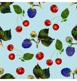 Cherry and blackberry seamless pattern vector image
