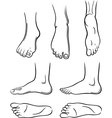 Feet vector image