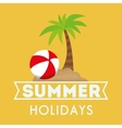 card summer holidays palm beach and ball vector image