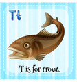 Flashcard of T is for trout vector image