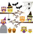 Happy Halloween Owls collections vector image
