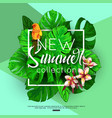 summer background tropical plants bird flowers vector image