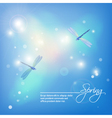 Spring abstract blue background with dragonflies vector image