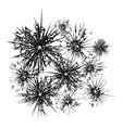 broken glass template vector image