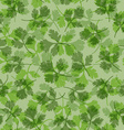 seamless texture of parsley vector image