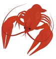 boiled red crayfish crawfish vector image