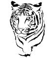 Big cat vector image
