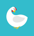 white hen isolated farm chicken bird on blue vector image