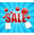 Sale Concept of Discount vector image
