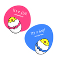 Newborn chicks vector image