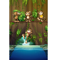 Scene with monkeys and river vector image vector image