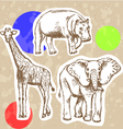 Hippo Elephant Geraffe vector image
