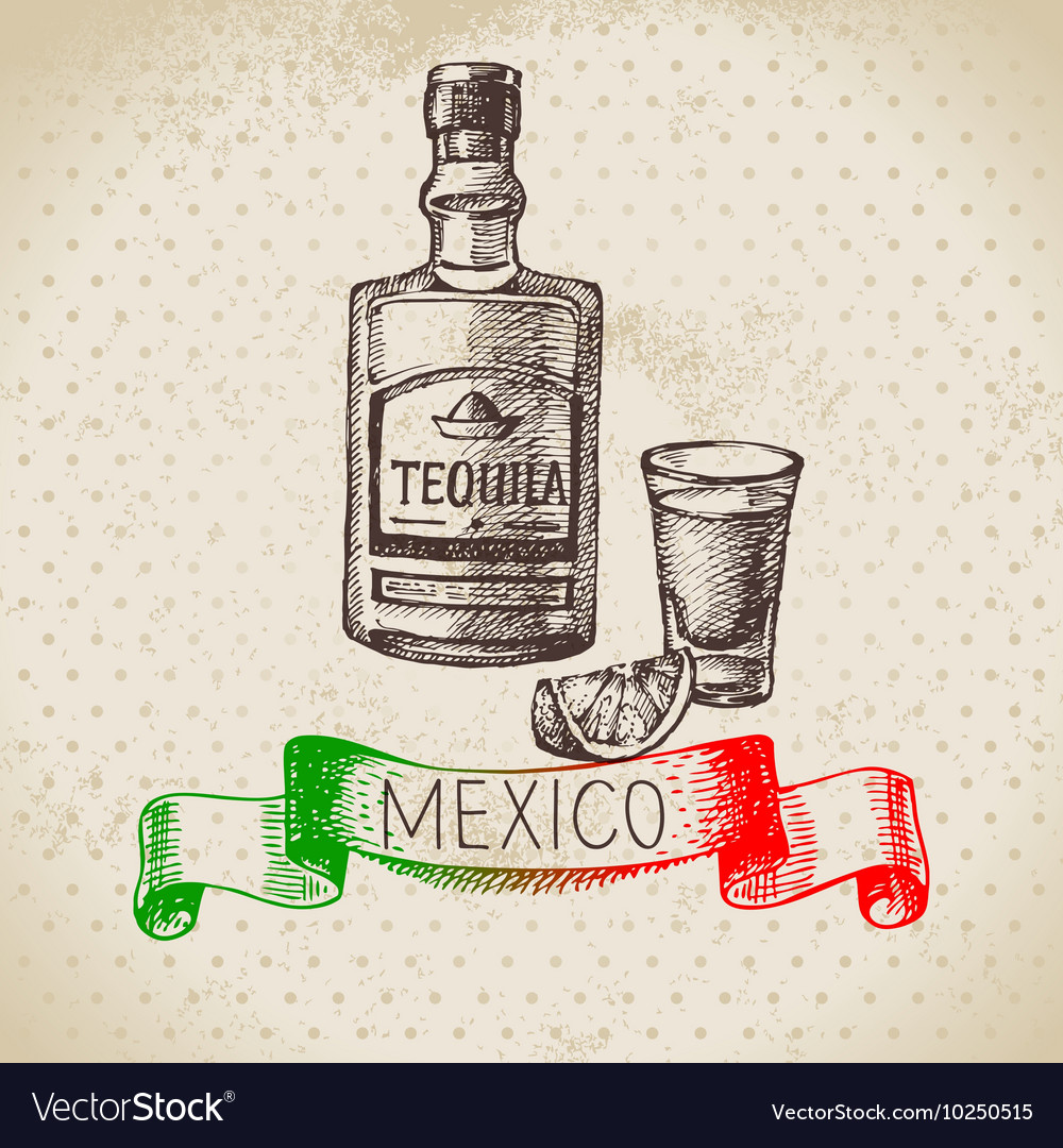 Mexican traditional food background with tequila vector