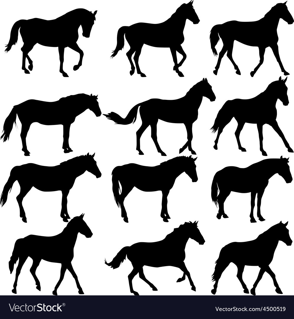 Set silhouette of horse vector
