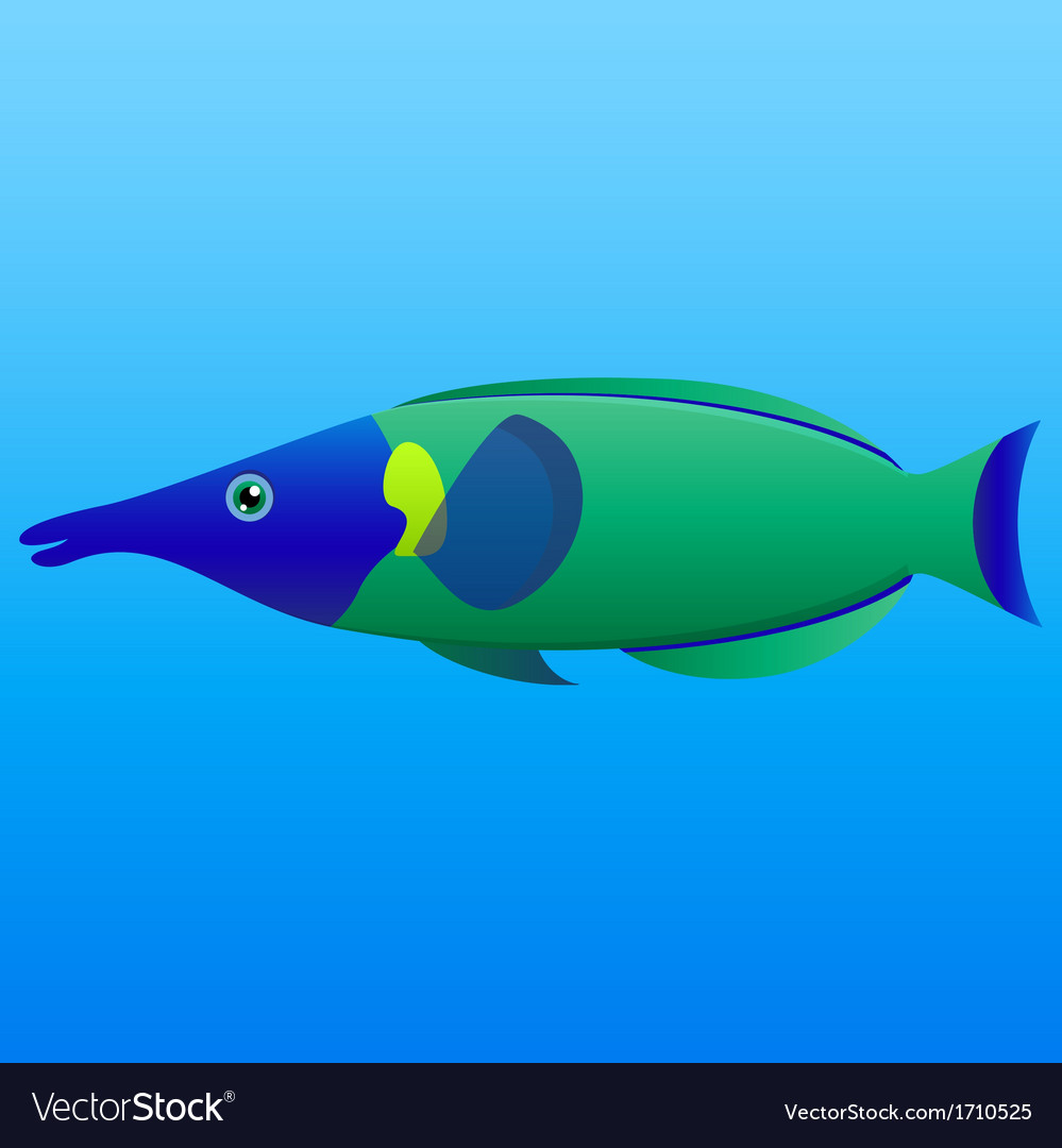 A of a blue lime and green long nosed bird wrasse vector
