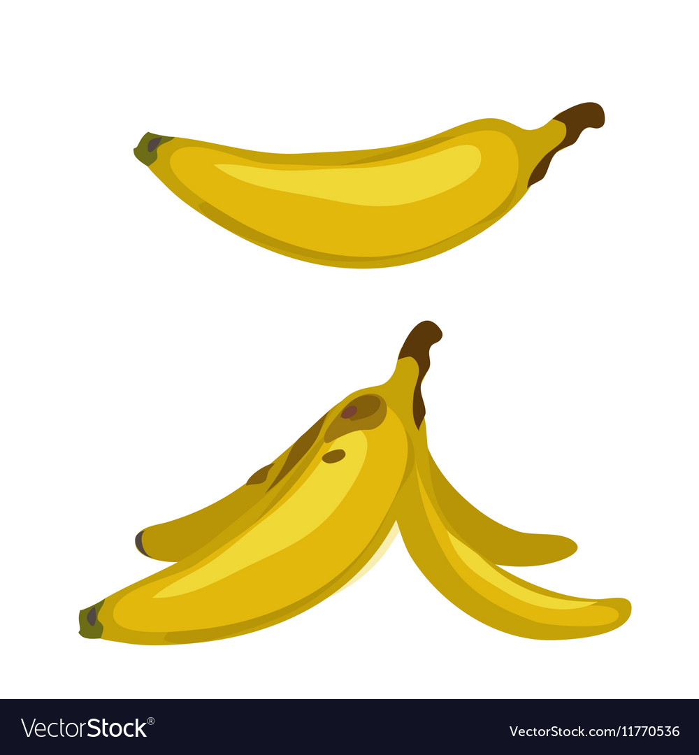 Whole banana and peel two images isolated vector