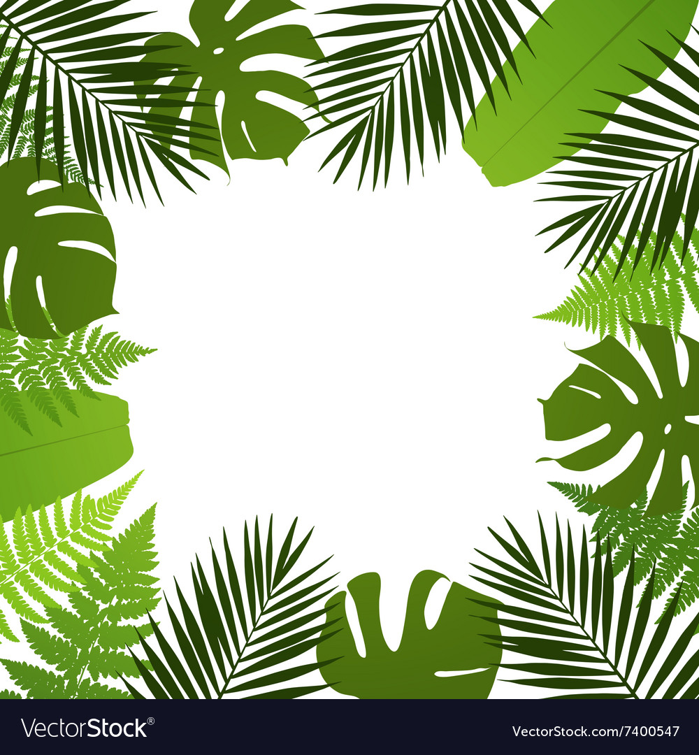 Tropical leaves background frame with vector