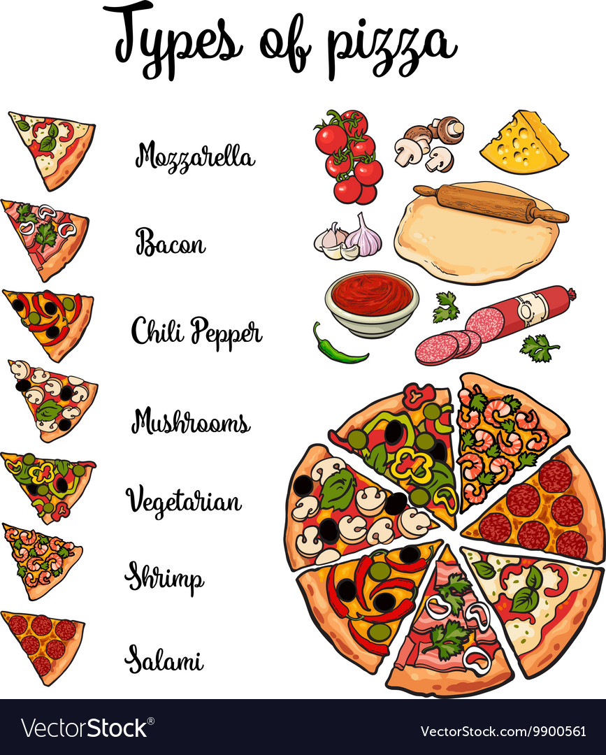 Types of pizza and basic ingredients vector