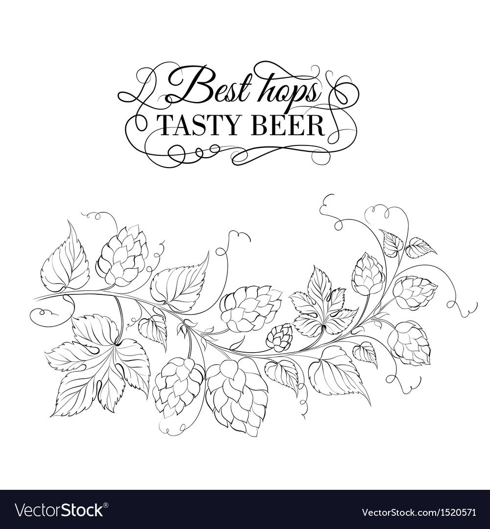 Decorative hops garland vector