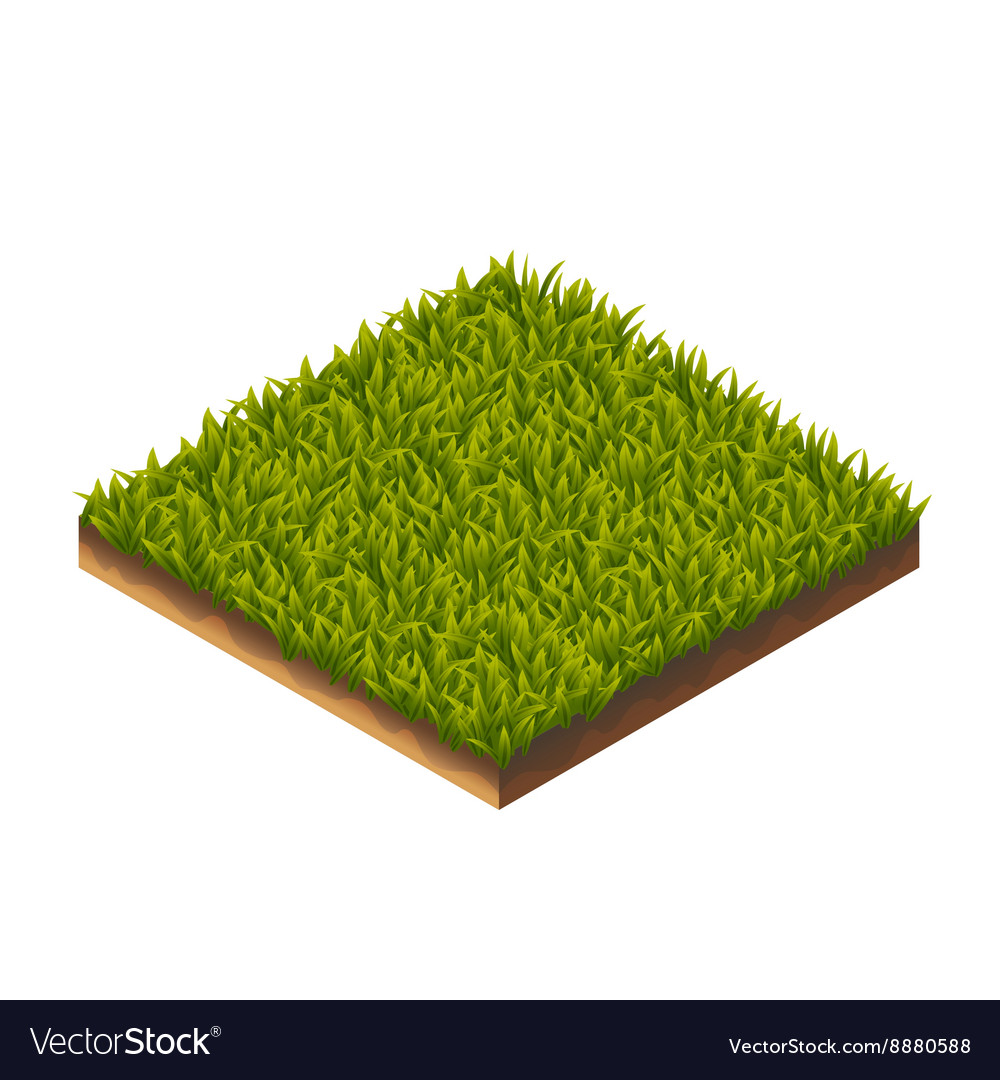 Grass pattern isometric vector