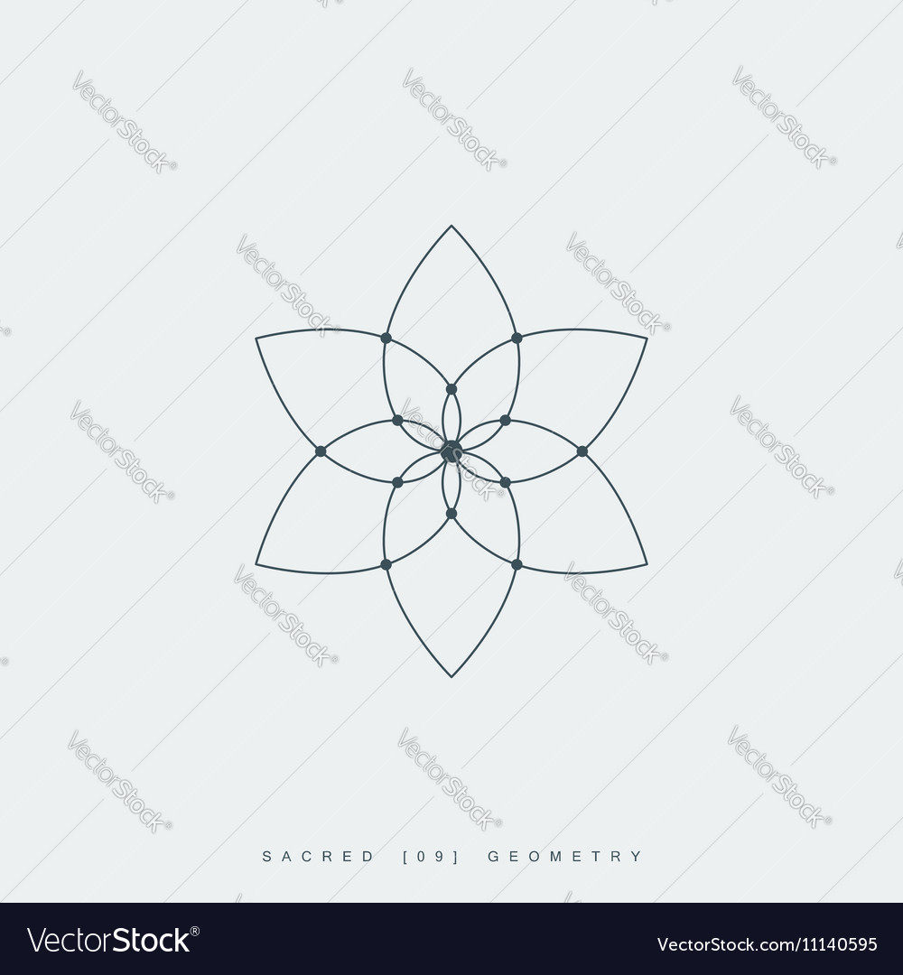 Sacred geometry vector