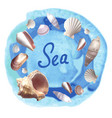 seachels on blue watercolor background vector image