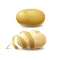 Set of Whole Unpeeled and Peeled Potato vector image