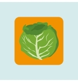 vegetable icon design vector image