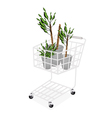 Yucca Trees or Dracaena Plants in A Shopping Cart vector image