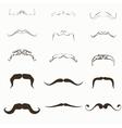 moustache Set vector image vector image