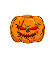 scary pumpkin for halloween vegetables for vector image