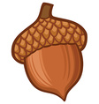 Acorn cartoon vector image vector image