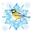 Sinica and snowflake vector image vector image