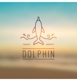 logo of dolphin and waves vector image