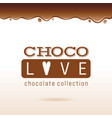 chocolate logo text lettering cocoa dessert vector image