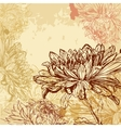 Chrysanthemum background vector image