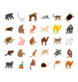 animals icon set flat style vector image