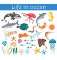 Set of cartoon sea animals fish Life in ocean vector image