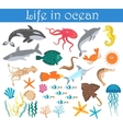 Set of cartoon sea animals fish Life in ocean vector image