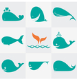 Whale vector image vector image