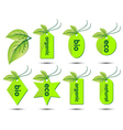 collection of ecological stickers vector image