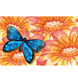 A big butterfly above the giant flowers vector image