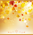 Autumn Sunny Background vector image