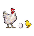White egg chick and rooster sketch set vector image